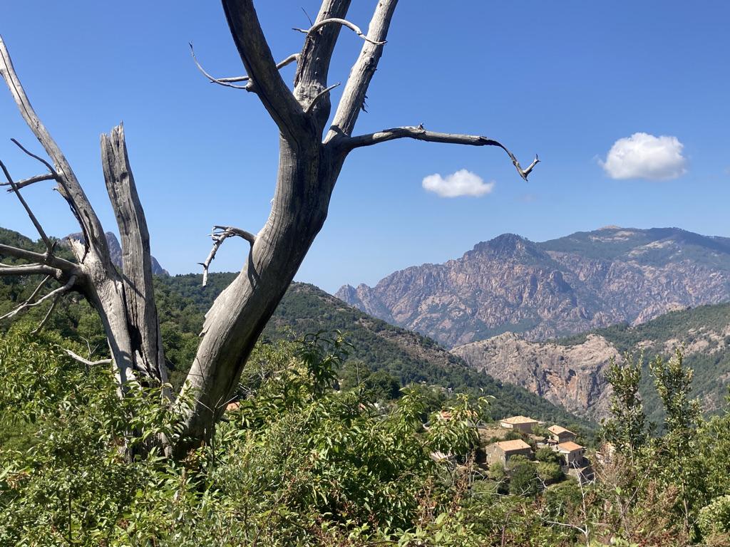 bergen op Corsica