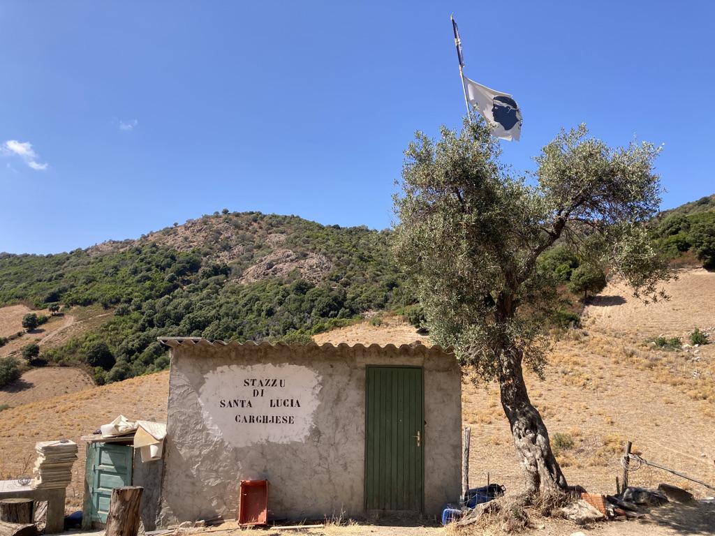 Corsicaanse Vlag